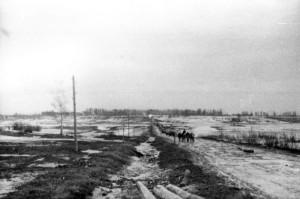 Дорога из Сп.Полисти на Селище [800x600]